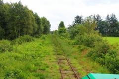 Cuxland, Wanna-Ahlen-Falkenberg 2017, Mit der Moorbahn im Ahlenmoor