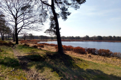 Cuxland, Beverstedt-Wollingst 2018, Wollingster See im Frühling