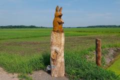 Cuxland, Loxstedt 2021, Moorgebiet bei Hetthorn, Hase
