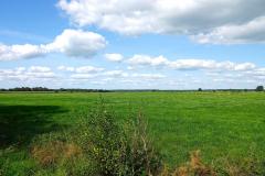 Cuxland, Loxstedt-Hetthorn 2021