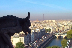 Paris, Blick vom Notre-Dame, Wasserspeier (Gargouille)