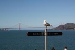 San Francisco, Blick von Alcatraz auf die Golden Gate Bridge