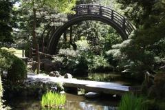 San Francisco, Japanischer Garten, Geschwungene Holzbrücke
