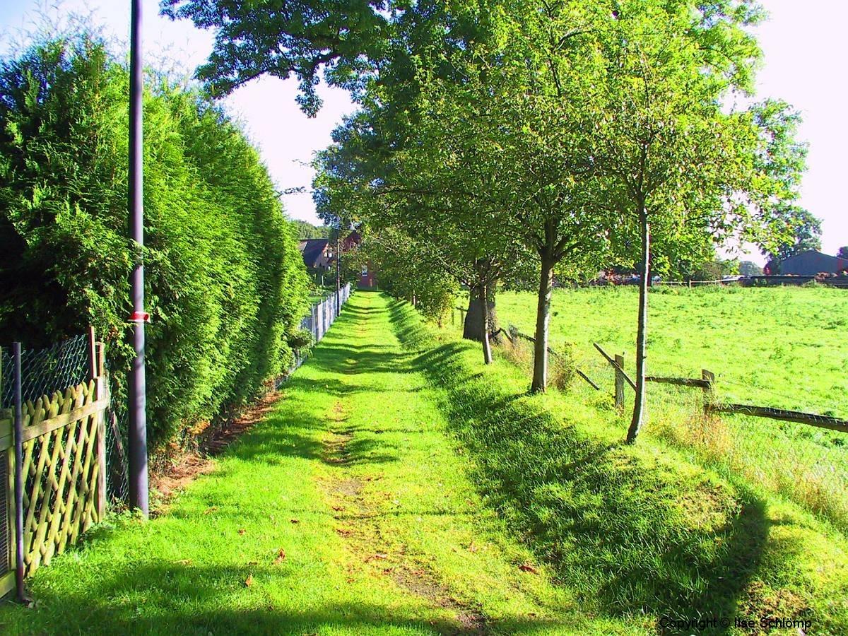 Cuxland, Stinstedt, Historischer Weg, Oktober 2005
