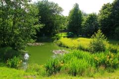 Cuxland, Stinstedt, Am Teich, Sommer 2012