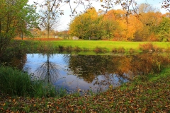 Cuxland, Stinstedt, Am Teich, Herbst 2011