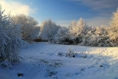 Cuxland, Stinstedt, Am Teich, Winter 2010