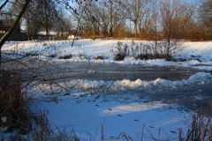 Cuxland, Stinstedt, Am Teich, Winter 2013