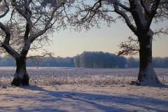 Cuxland, Stinstedt, Lütje Wisch, Winter 2010