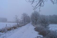 Cuxland, Stinstedt, Ein Nebeltag im Moor, Winter 2005