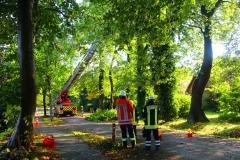 Cuxland, Stinstedt, Oktober 2017, Die Feuerwehr beseitigt Schäden an den Eichen in der Ringstraße, die Sturmtief Xavier hinterlassen hat