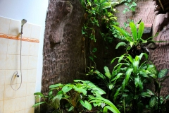 Sumatra, Leuser Nationalpark, Bukit Lawang Cottage, Dusche im Grünen