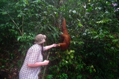 Sumatra, Leuser Nationalpark