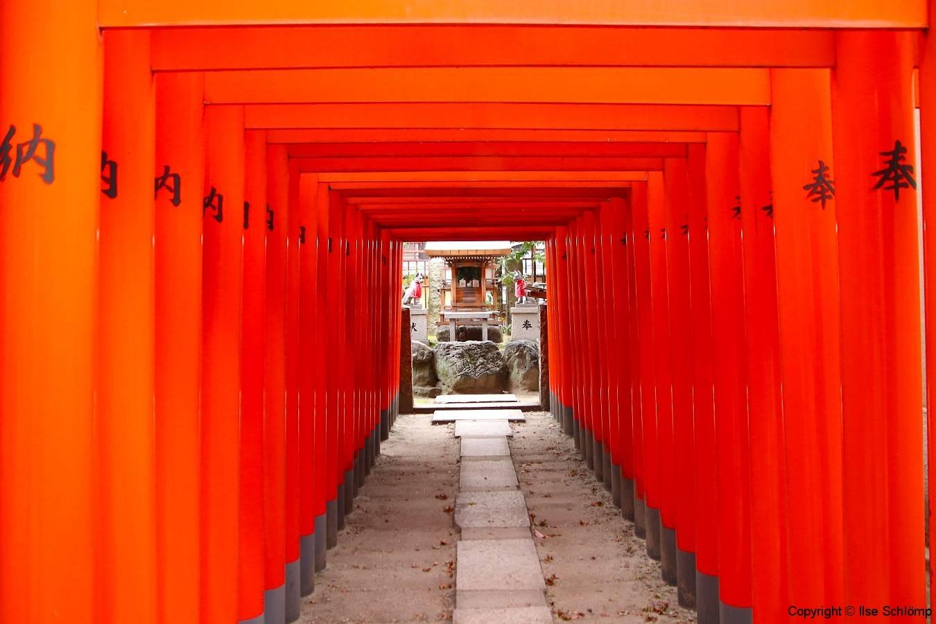 Japan, Osaka, Tenman-gu Schrein, Torii-Gang