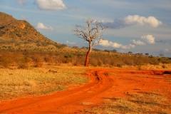 Kenia, Tsavo Ost