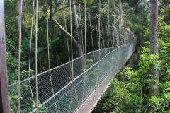 Malaysia, Taman Negara-Regenwald, Canopy-Walk