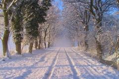 Niedersachsen, Stinstedt, Eichenweg im Winter