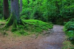Nordrhein-Westfalen, Teutoburger Wald