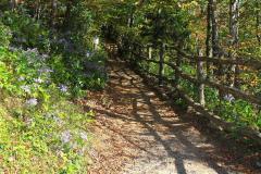 USA, North Carolina, Great Smoky Mountains Nationalpark, Appalachian Trail