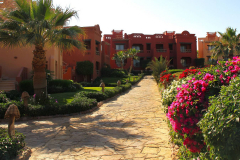 Ägypten, Rotes Meer, Sharm El Sheikh 2011