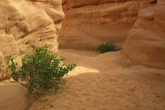 Ägypten, Sinai, Coloured Canyon