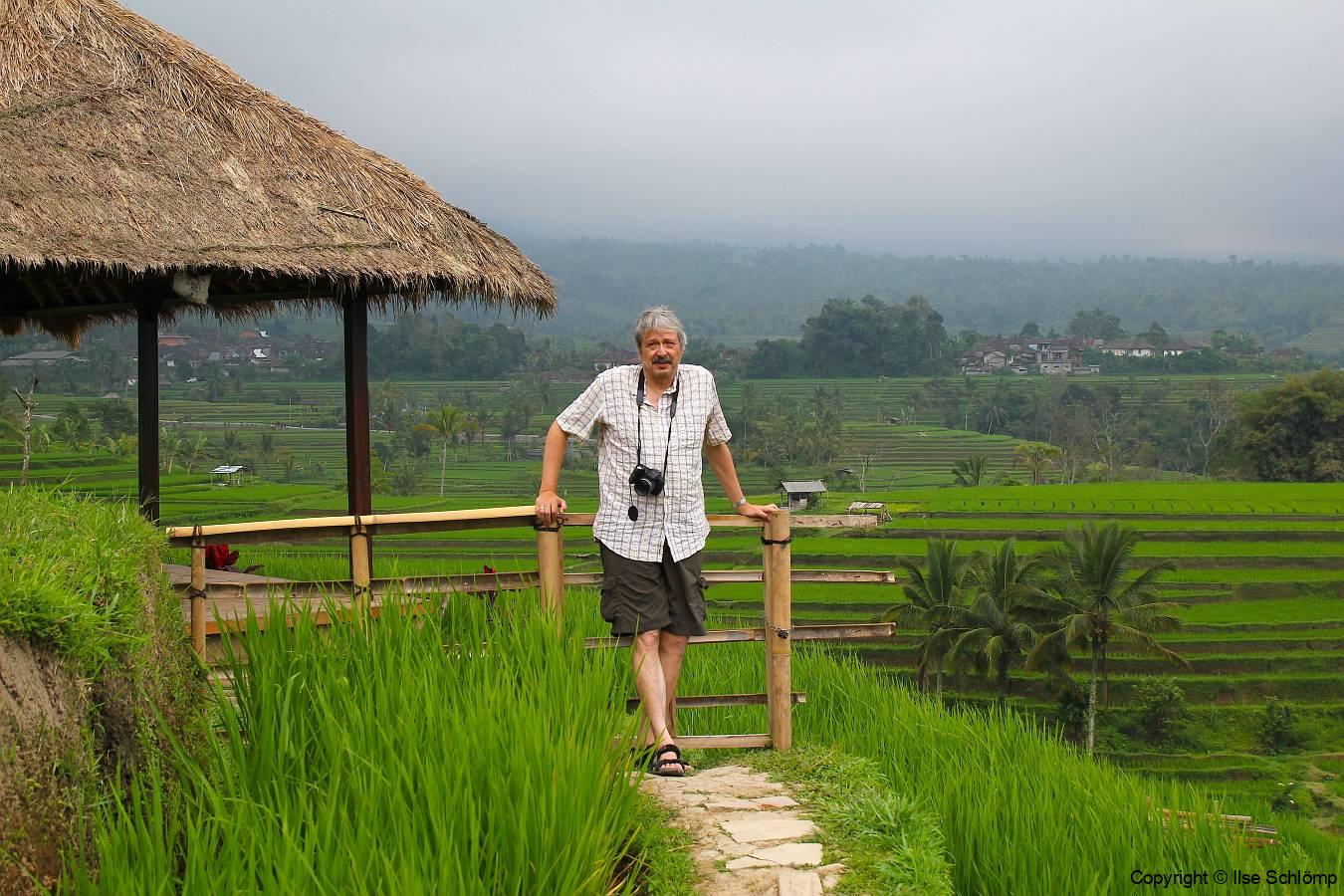 Bali, Reisterrassen bei Jatiluwih