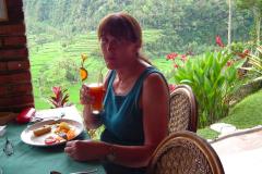 Ost Bali, Reisterrassen