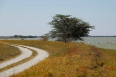 Botswana, Nata Vogelschutzzentrum