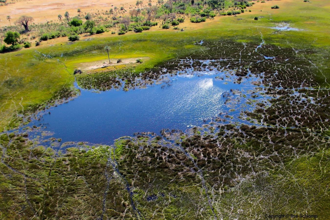 Botswana, Okavango Delta