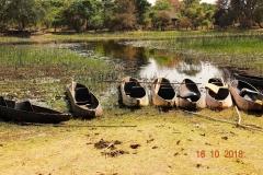 Botswana, Okavango Delta, Mokoros