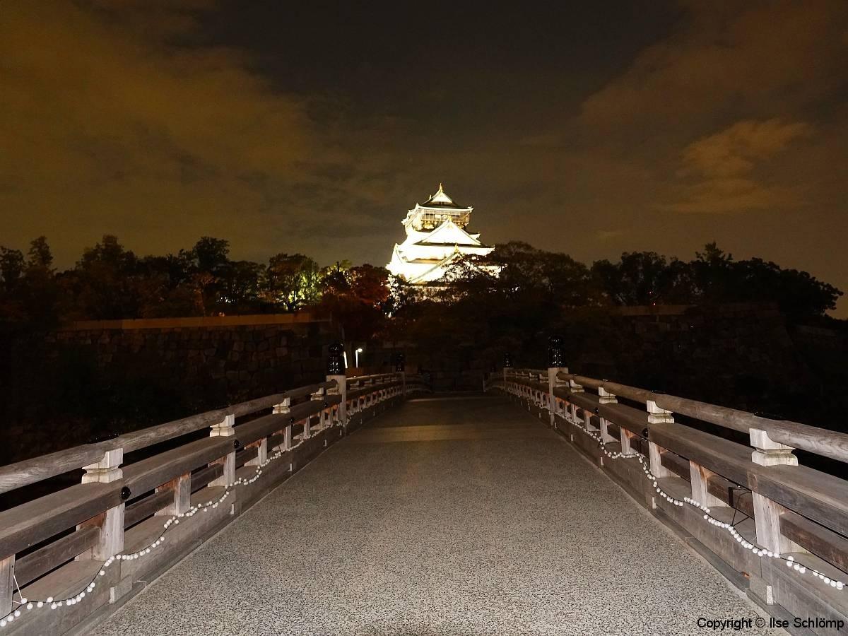 Burg Osaka bei Nacht, Osaka, Japan