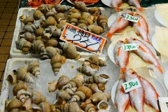 Japan, Kanazawa, Fischmarkt
