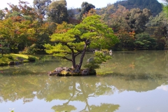 Japan, Kyoto, Kyoko-chi-Teich