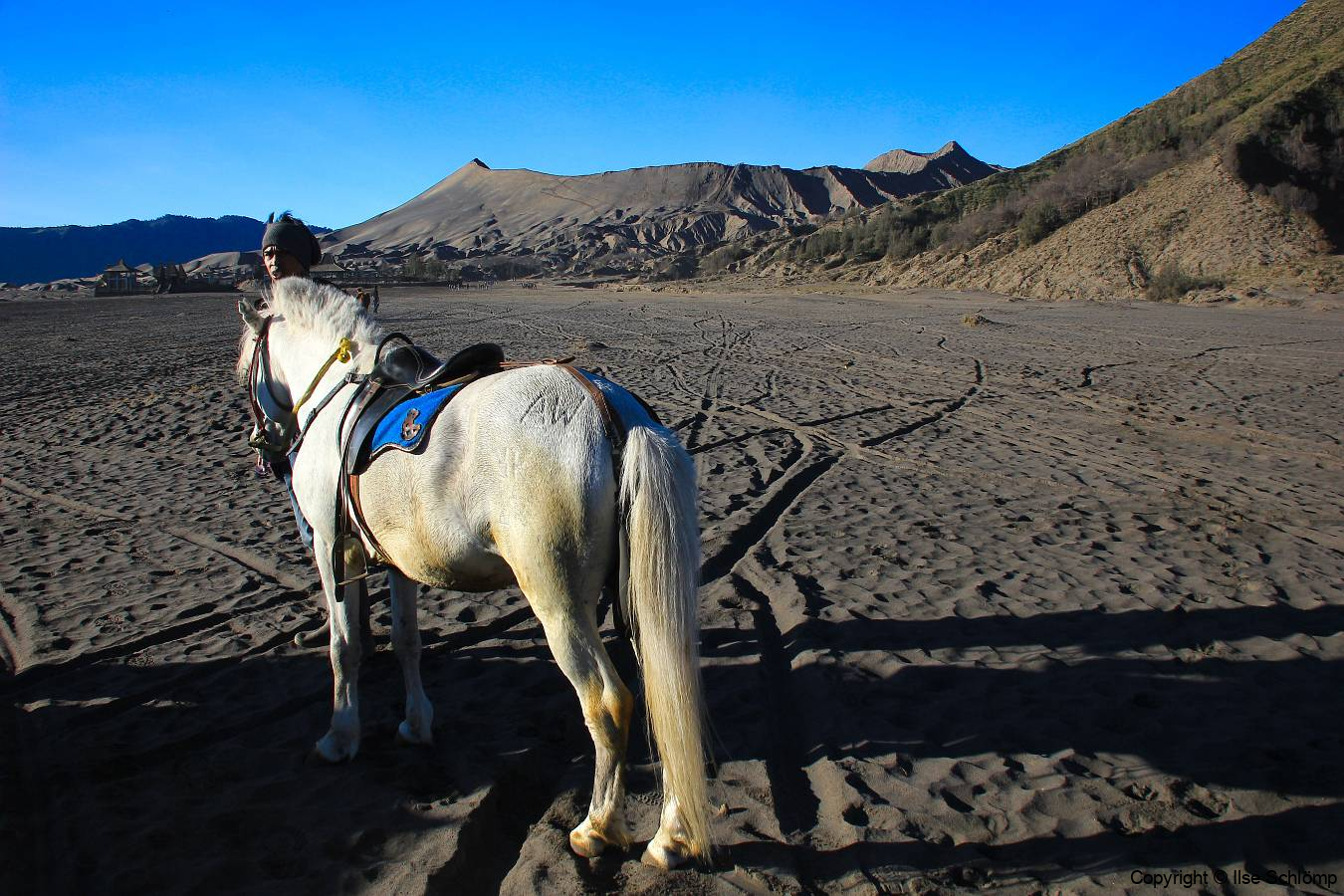 Java, Auf Pferden durch tiefe Asche zum Vulkan Mount Bromo