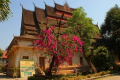 Laos, Vientiane, Wat Haysoke