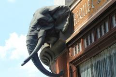 Leipzig, Kaffeehaus Riquet, Elefantenkopf über dem Eingang