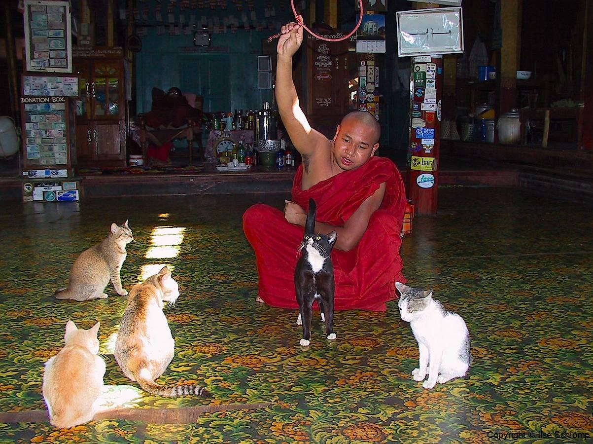 Myanmar, Inle-See, Nga Phe Kyaung Kloster, Kloster der springenden Katzen