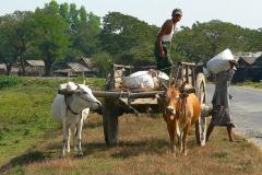Myanmar, Begegnungen unterwegs auf dem Weg nach Kyaiktiyo