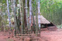 Myanmar, Unterwegs auf dem Weg nach Bago, Bambus