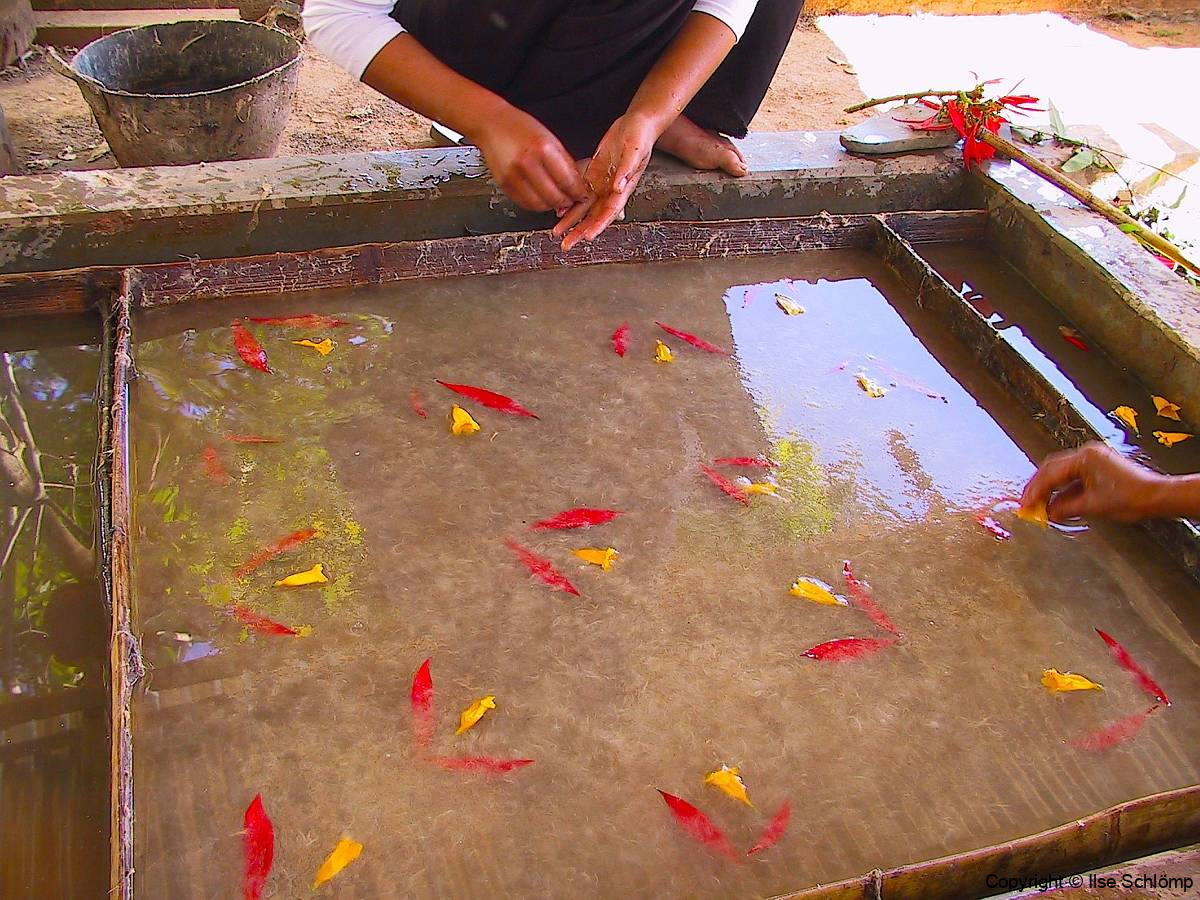 Myanmar, Pindaya, Traditionelle Papierherstellung