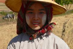 Myanmar, Pindaya, Getreideernte
