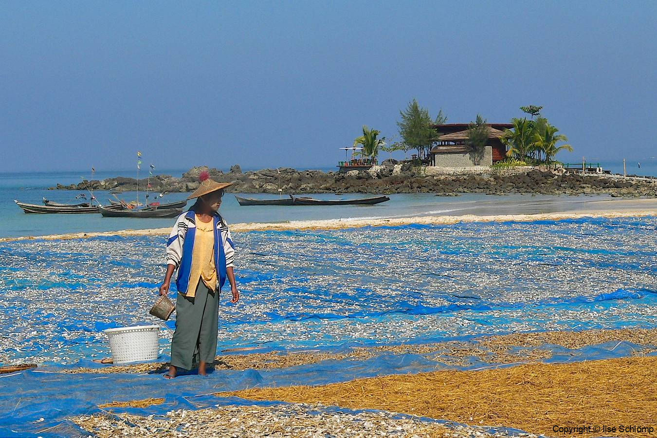 Myanmar, Ngapali Beach, Fische liegen am Strand zum Trocknen aus