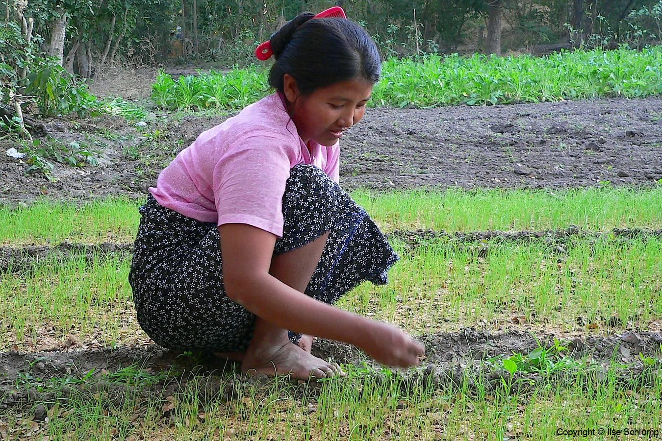Myanmar, Sri Ksetra, Besuch eines Dorfes