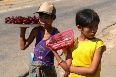 Myanmar, Pyay, Unterwegs werden Wachteln zum Verkauf angeboten