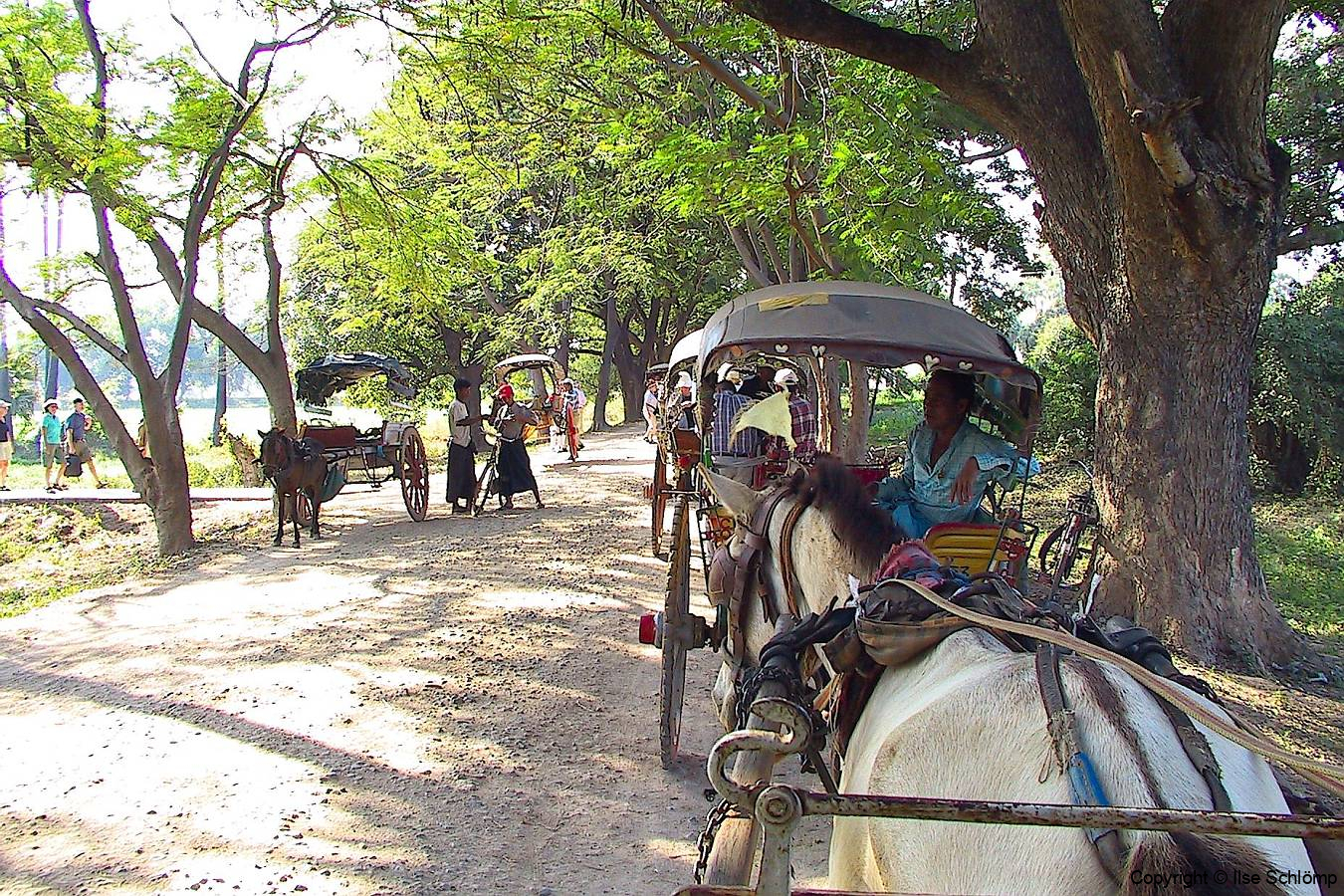 Myanmar, Pferdekutschenfahrt nach Inwa
