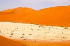 Namibia, Sossusvlei, Abgestorbene Akazienbäume im Deadvlei