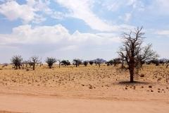 Namibia, Namib Naukluft Nationalpark
