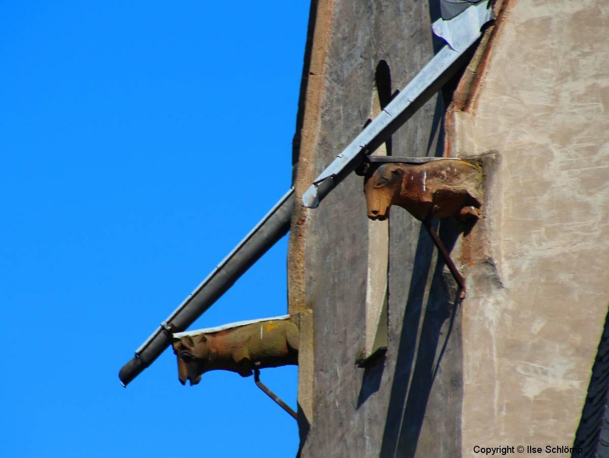Oberwesel, Wasserspeier an der gotischen Liebfrauenkirche