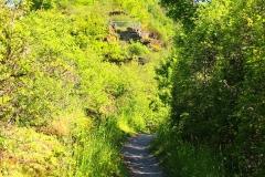 Oberwesel, Elfenley-Weg zur Schönburg