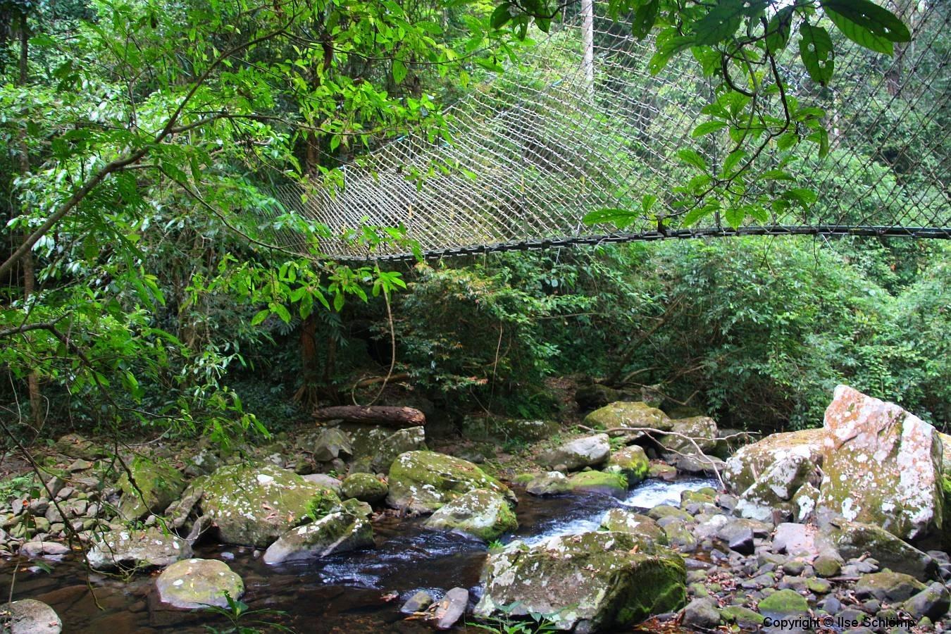 Laos, Oudomxay, Nam Kat Yola-Regenwald, Canopy Walk
